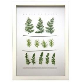 ハーブフレーム カフェ インテリア musee de herbe Herbe 3 23.3×32×2cm ギフト 装飾 インテリア 取寄品