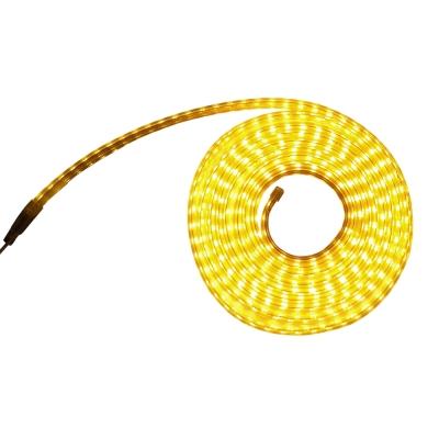 Tree Walker LED單色軟燈條-雙珠 黃光