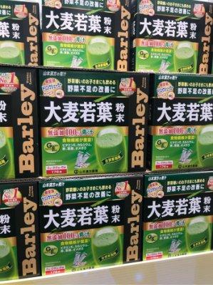 Costco好市多 日本 大麥若葉粉末 3gx176包  青汁