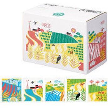 【ドリップコーヒー】関西アライドコーヒーロースターズ ダラゴア農園ブレンド 1箱(100袋入)+ダラゴア 受け皿 2個 セット