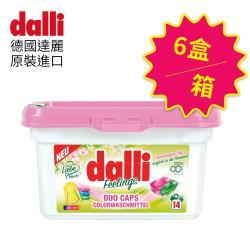 德國達麗Dalli 護色雙效洗衣膠囊14球x6盒