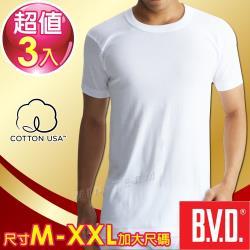 BVD 100%純棉優質圓領短袖衫(3件組)-尺寸M-XXL