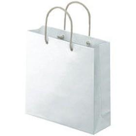 アスクル 樹脂カバー付き 手提げ紙袋 ホワイト S 1袋(10枚入)