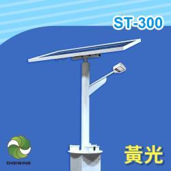 DIGISINE 太陽能智能路燈 - 12V系統/2000流明/黃光 ST-300