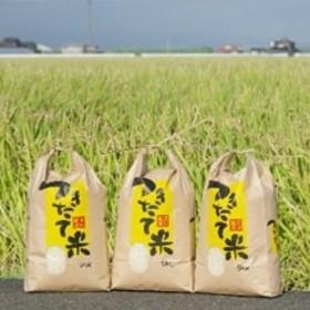 【先行受付 令和元年産米】玄米さがびより 15kg