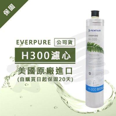 【水屋 ~ 附發票】Everpure (公司貨) H300濾心(雷射標籤)~黑水保固購買日起20天內