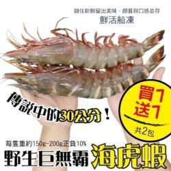 海肉管家-野生巨無霸嚴選海虎蝦(買1送1 共2支)