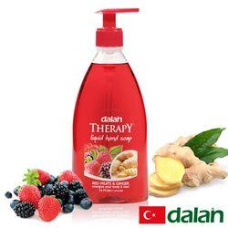 土耳其dalan - 綜合莓果生薑健康洗手乳 400ml