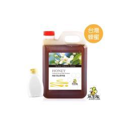 【尋蜜趣】 南部經典蜂蜜-高山野淬蜜3公斤(贈分裝空瓶X1)