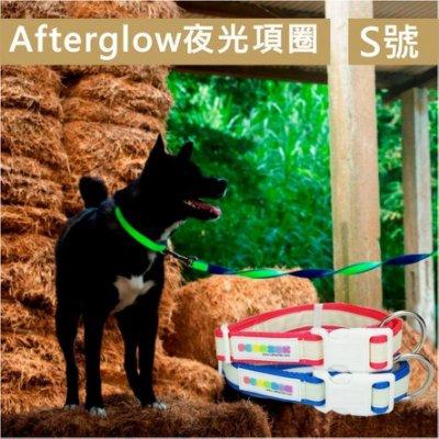 Pet's Talk~Afterglow夜光系列-夜光狗狗項圈 S號