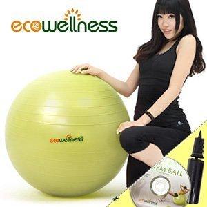 26吋韻律球ecowellness加厚防爆65cm贈送打氣筒瑜珈球抗力球彈力球健身球C010-001T-26【推薦+】