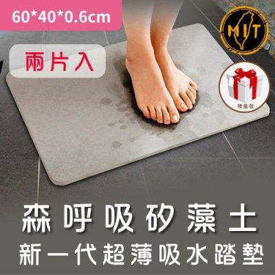 (免運)台灣製造【珪藻墊】 土地墊 吸水地墊 藻土地墊 腳踏墊 地墊 踏墊 60*40*0.6cm