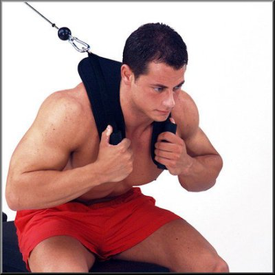 【Fitek健身網】V型 AB拉帶☆V型腹肌訓練帶☆重量訓練機配件☆台灣製