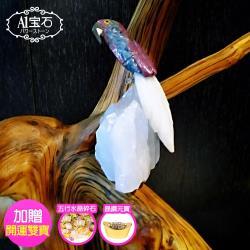 【A1寶石】頂級彩色水晶鳥-白水晶簇(同聚寶盆發財樹水晶洞功效)