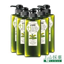 【tsaio上山採藥】茶樹美背沐浴露600ml(5入)+贈茶樹乾洗手X2