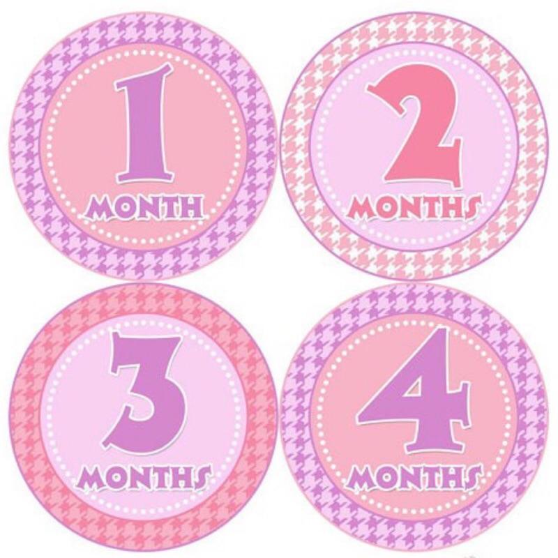 美國 Bumblebee 0-1歲 寶寶月份貼紙 妙衣貼 成長紀錄-粉色千格紋-G031