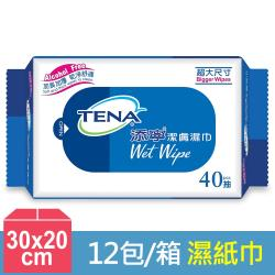 添寧 潔膚濕紙巾40抽x12包