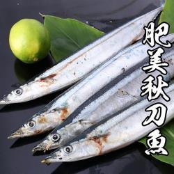 海鮮王  嚴選肥美秋刀魚 3包組(150g±10%/4~6尾/包)