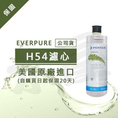 【水屋 ~ 附發票】Everpure (公司貨) H54/H-54濾心(雷射標籤)~黑水保固購買日起20天內