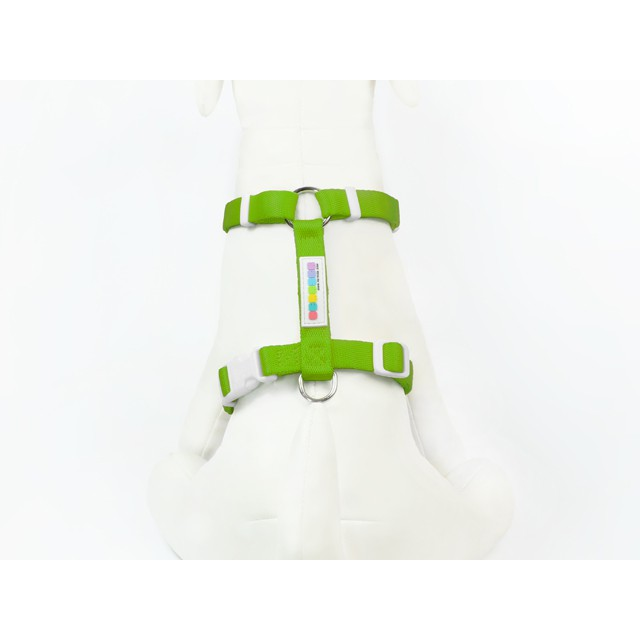 PETRICK Basic Harness 派翠克 經典款H型胸背帶 S號 /B區色系