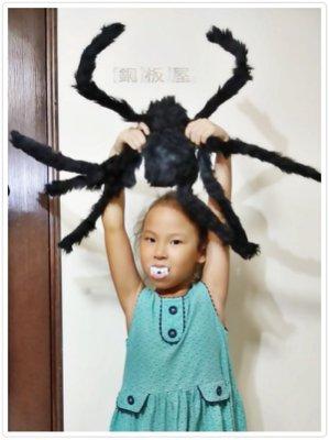 【銅板屋】*現貨*(買大送小)超大 蜘蛛 75cm 整人嚇人 佈置  玩具 擬真 道具 萬聖節 毛蜘蛛 大黑蜘蛛 模度