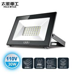 【太星電工】30WLED防水投射燈/110V/白光