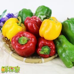 【鮮採家】特選肉厚六角蒂綜合彩椒組合3台斤(青椒.紅椒.黃椒)