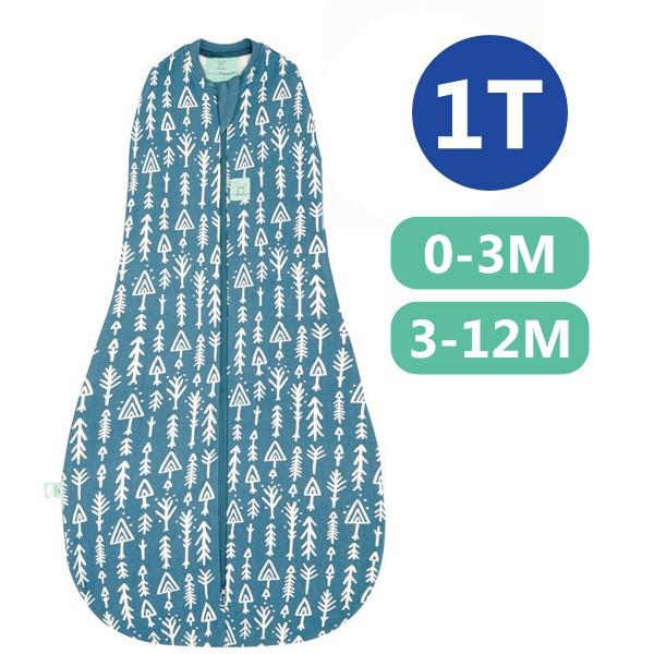【麗兒采家】ergoPouch 二合一竹纖有機舒眠包巾1T(春.秋款)(0~3M/3-12M) 懶人包巾-針葉藍