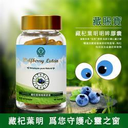 西藏藍莓葉黃素明眸膠囊━葉黃素+花青素終極補充方案