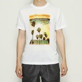 イグニオ IGNIO メンズ サーフ 半袖Tシャツ サーフ 半袖Tシャツ IG-3S13679TS