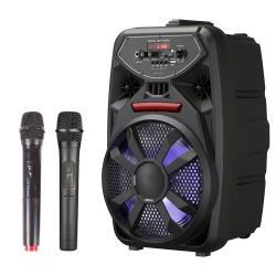 大聲公歡樂型無線麥克風多功能行動音箱/喇叭 (雙手持麥克風組)