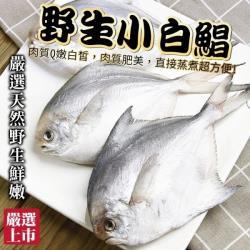 海肉管家-天然嚴選野生小白鯧1包(每包3-5尾/約300g±10%)