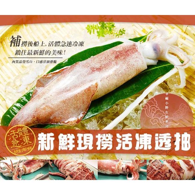 【幸福小胖】新鮮現撈活凍透抽 (300g裝、1公斤裝)