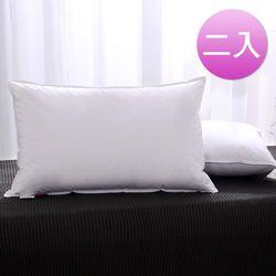 DON 100%飯店級立體羽毛枕-二入