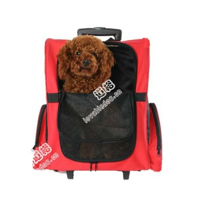 【葳爾登】寵物旅行箱可背透氣寵物推車寵物拉桿背包貓狗推車寵物背包外出提籠26047紅色
