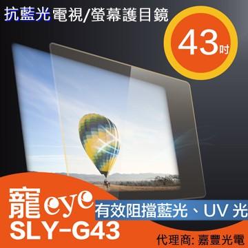 (免運費)【寵eye】43吋 抗藍光液晶電視/螢幕護目鏡 (SLY-G43)