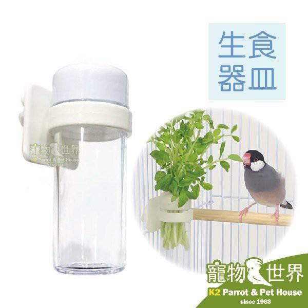 日本WILD SANKO 鳥用新鮮生食器皿 B64 葉菜餵食器 插菜盆《寵物鳥世界》SY084