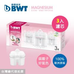BWT德國倍世Mg2+鎂離子濾芯(三入組)