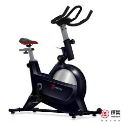 輝葉 創飛輪健身車-(Triple傳動系統) HY-20151