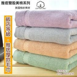 台灣興隆毛巾 美國棉雅痞雙股加厚毛巾1條-多色可選