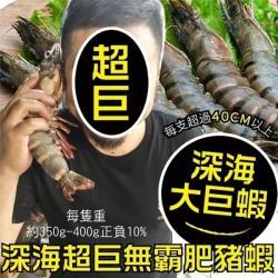 海肉管家-嚴選深海鮮美肥豬蝦(4支/每支約350~400g±10%)