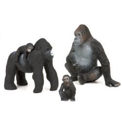 【美國TERRA】大猩猩家族