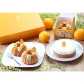 日南産マイヤーレモン HiNa fruit sweets ギフト (ウイークエンド・チーズケーキ)
