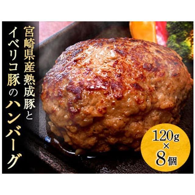 宮崎県産熟成豚とイベリコ豚のハンバーグ120g×8個