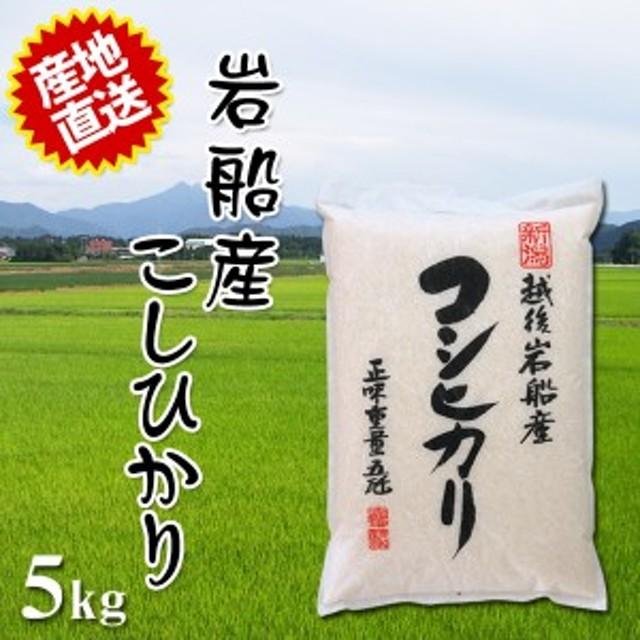 2019年産 令和元年産 2019 令和 米 とれたての美味しさ 米 ご贈答にも最適 岩船産コシヒカリ 5kg