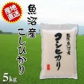 2019年産 令和元年産(2019 令和) 精米 米 とれたての美味しさ ご贈答にも最適 魚沼産コシヒカリ 5kg 白米 米 精米 米済