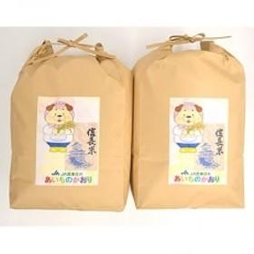 愛知県産 信長米(あいちのかおり)玄米5kg×2袋