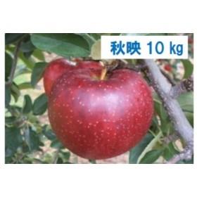 秋映(あきばえ) 10kg