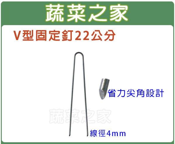 【蔬菜之家】V型固定釘22公分(線徑4mm.V型釘.鐵線釘)