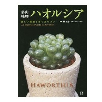 多肉植物ハオルシア/林雅彦(1947〜)